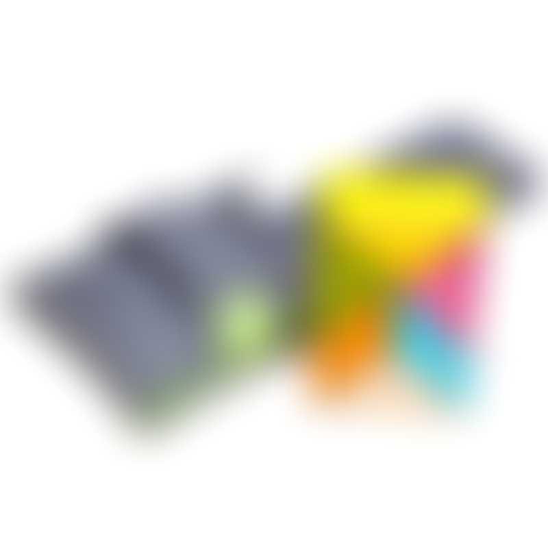 Tegu Prism Pocket Pouch - Tints