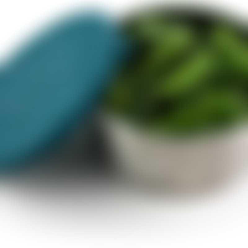 ECOlunchbox Seal Cup XL