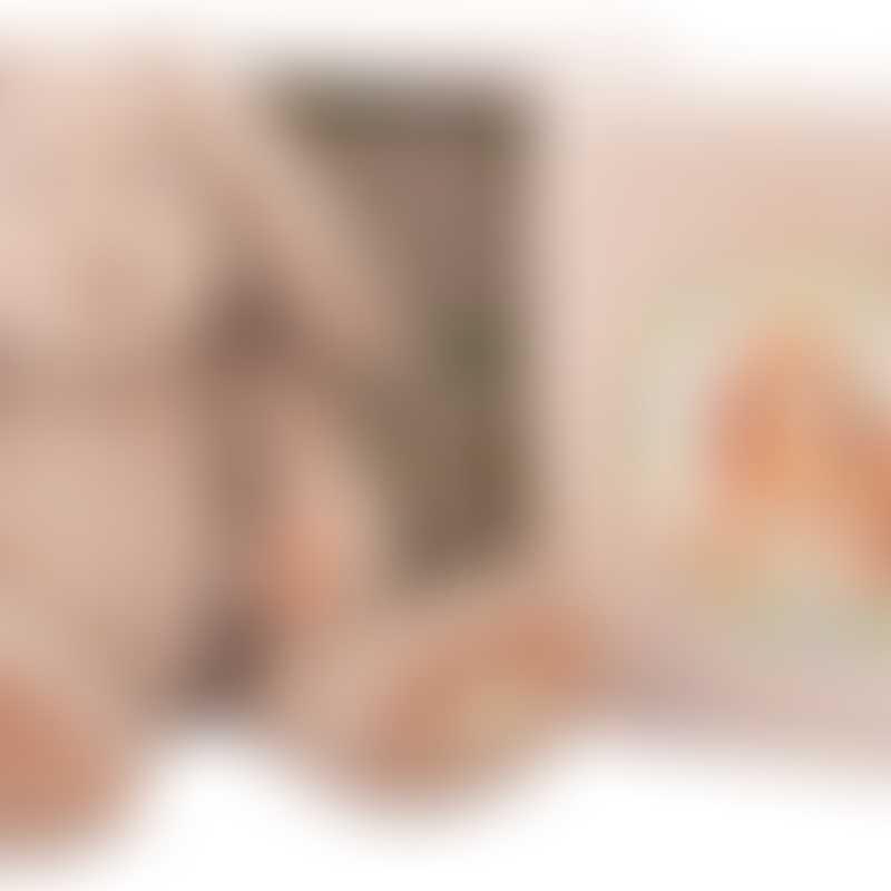 Moulin Roty Vite un Calin Jeannette Mummy Rabbit in a Box 32cm
