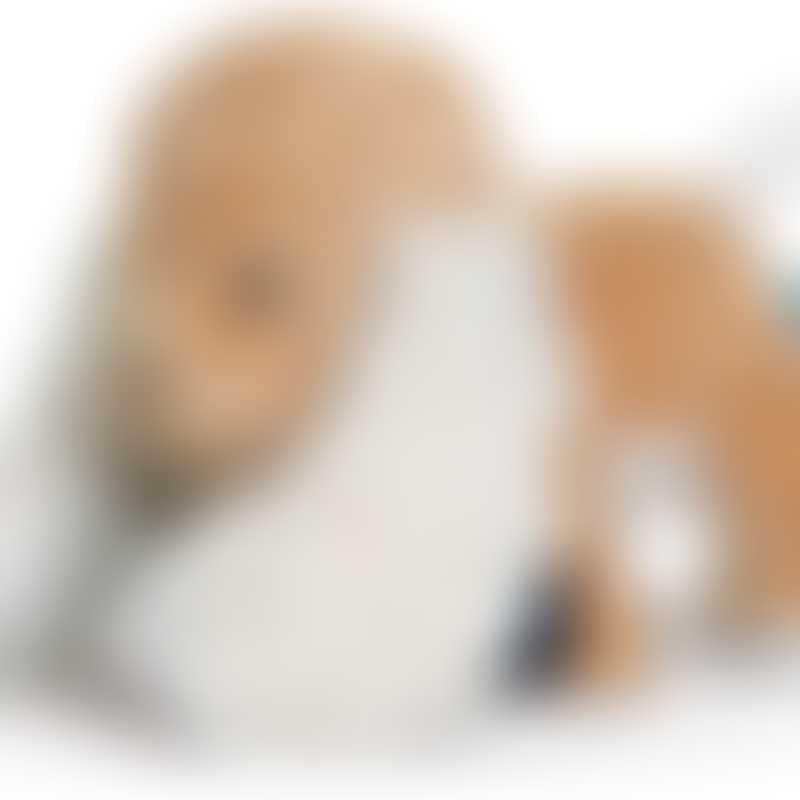 Kaloo Les Amis Caramel Puppy - 25cm