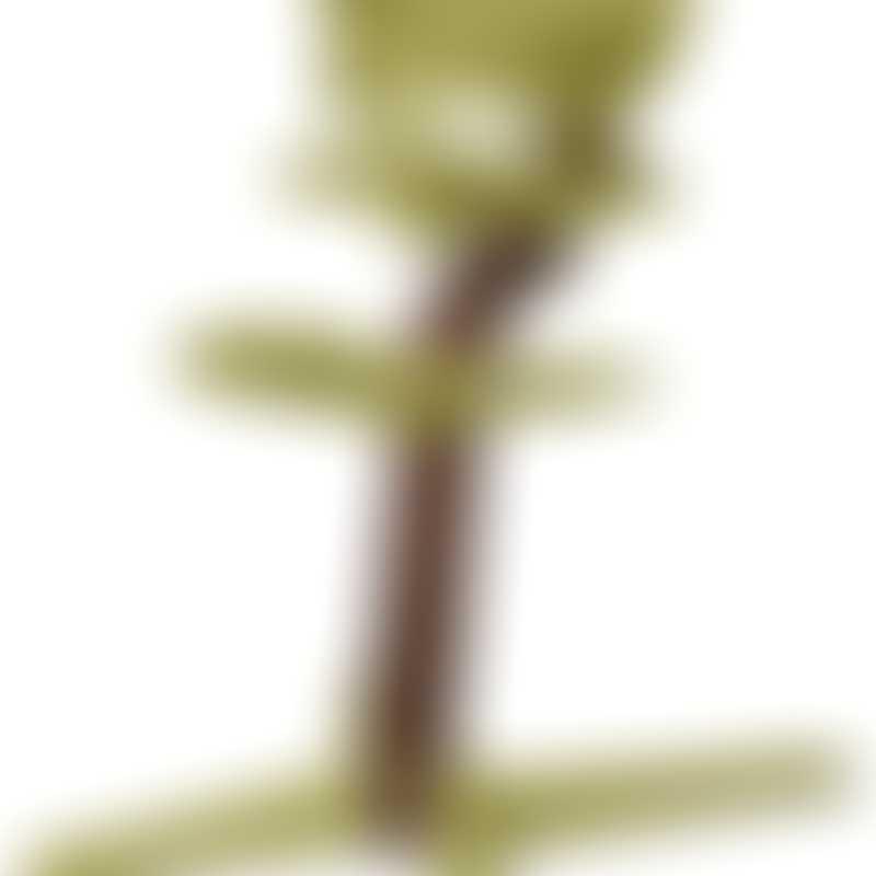 Nomi by Evomove Nomi Highchair + Mini Restraint - Walnut / Lime