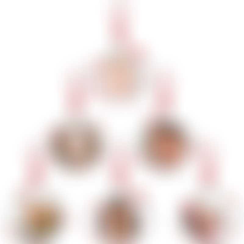 Pearhead Family Tree Ornament Set