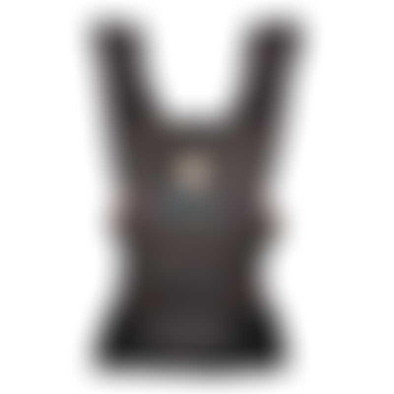 Ergobaby AERLOOM Baby Carrier - Multi-Color