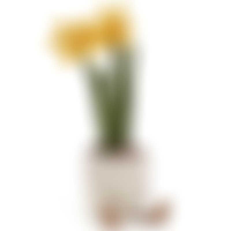 Jellycat Amuseable Daffodil 30cm