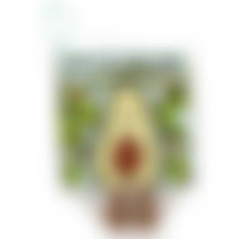 Jellycat Avocado Fabric Book 16cm