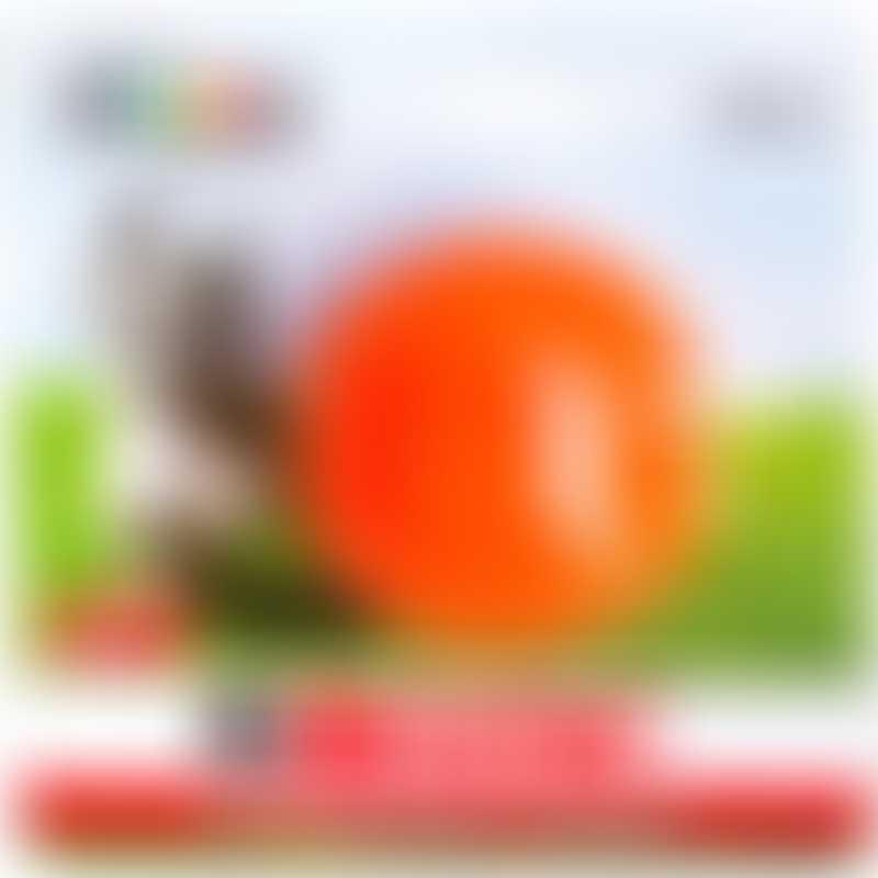 Bionic Supernatural Strong Ball - Orange
