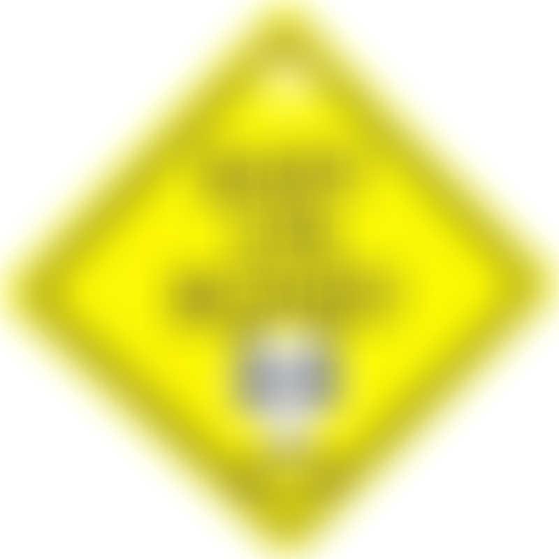 Snapkis Car Sign - Panda