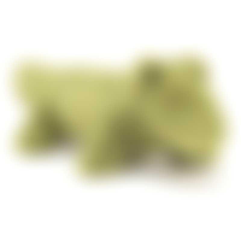 Jellycat Diddle Croc 21cm