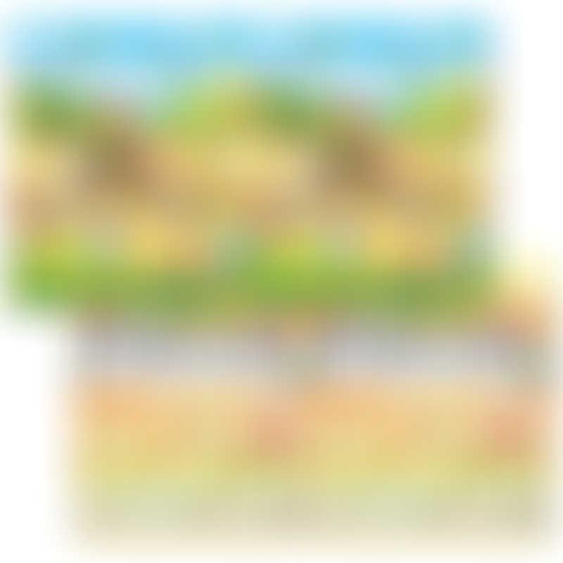 Dwinguler Double Sided Playmat - Large 230x140cm - Music Parade