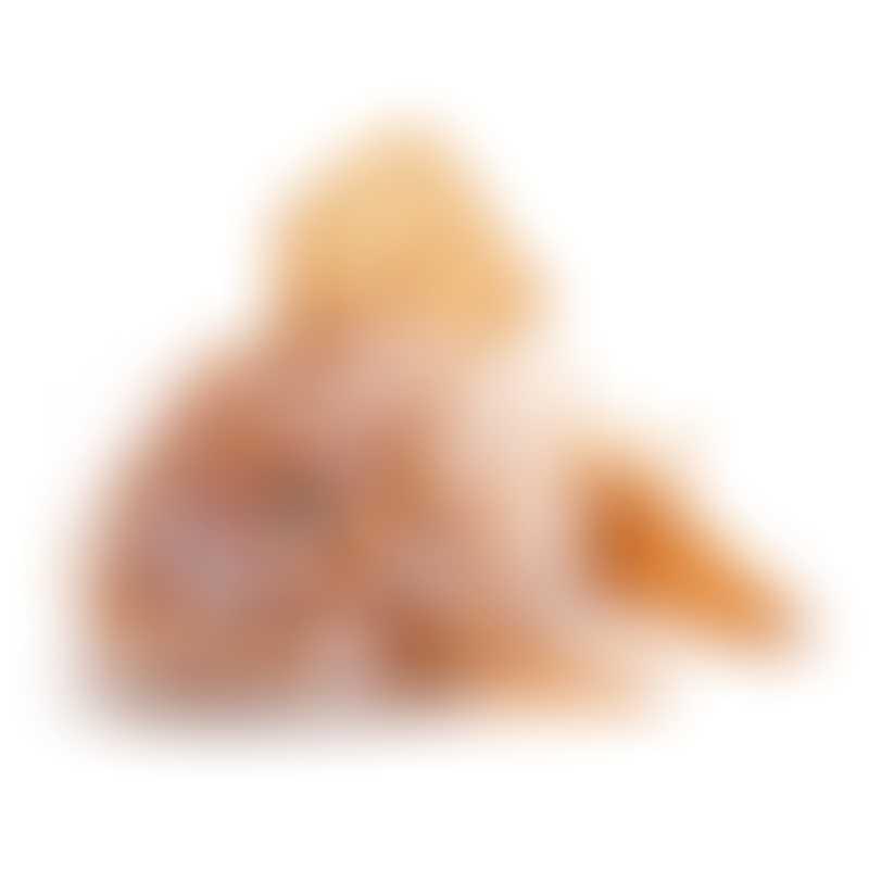 Jellycat Grumpy Fish Orange 22cm