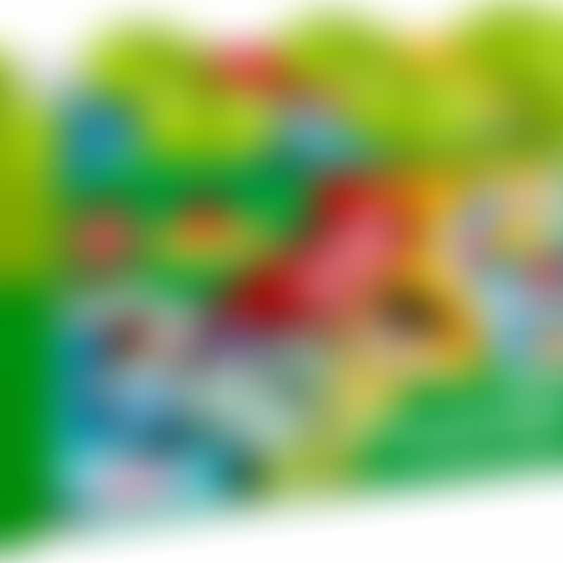 LEGO 10913 DUPLO Brick Box