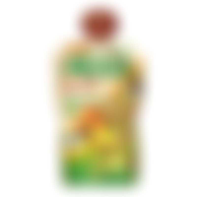 Mogli Organic Apricot Moothies 100g