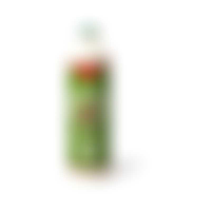 Cloud Star Buddy Wash Dog Shampoo - Green Tea & Bergamot-  16oz