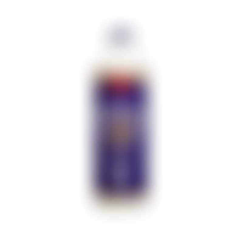 Cloud Star Buddy Wash Dog Shampoo - Lavender & Mint-  16oz