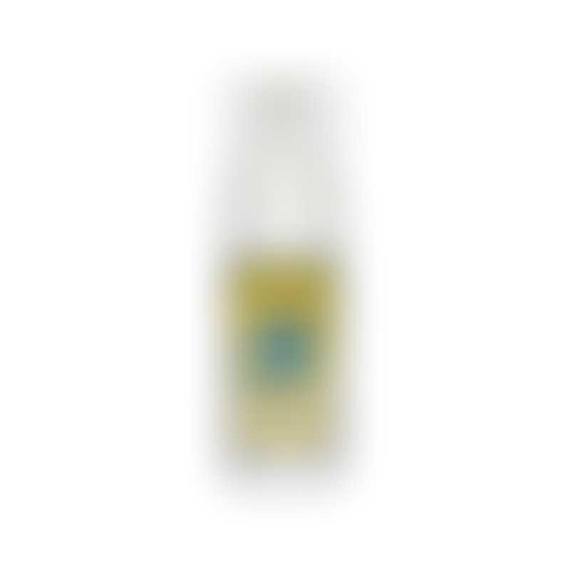 earthbath Hypo-Allergenic Groom Foam-  4oz