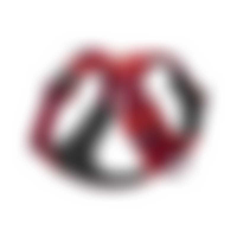 Ruffwear Front Range Harness-  Red Sumac-  XS