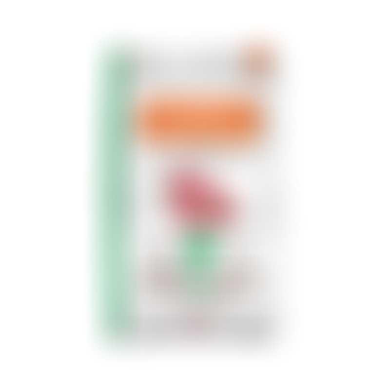 Nature's Variety - Instinct Limited Ingredients Diet Grain Free Dog Kibble - Lamb-  20lb