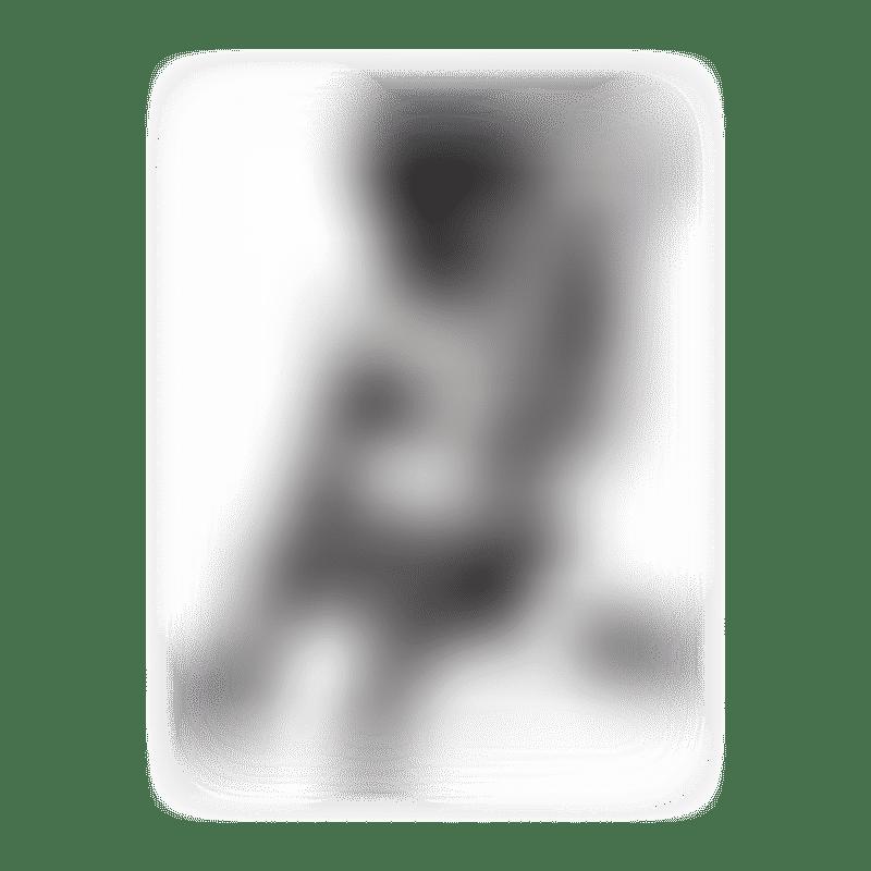 Piccolo Cane Bene II Pet Stroller Color : Grey