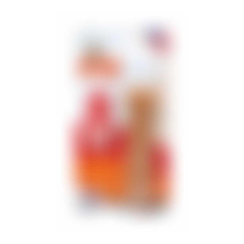 Nylabone DuraChew Toy Bacon -  flavor: Petite