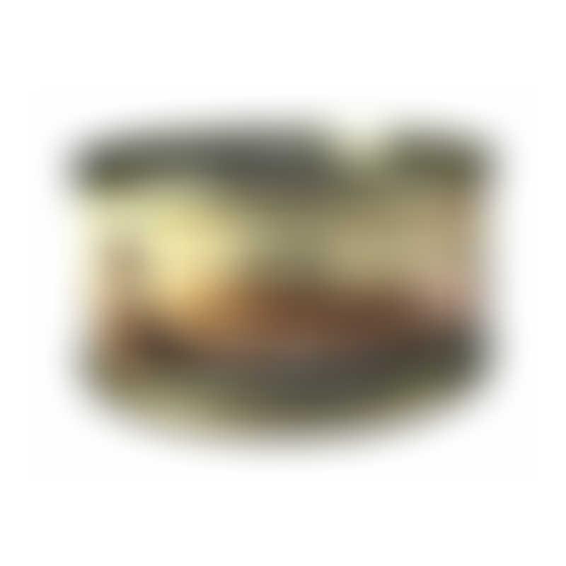 Canidae Feline PURE Shredded Chicken in Gravy-  70g
