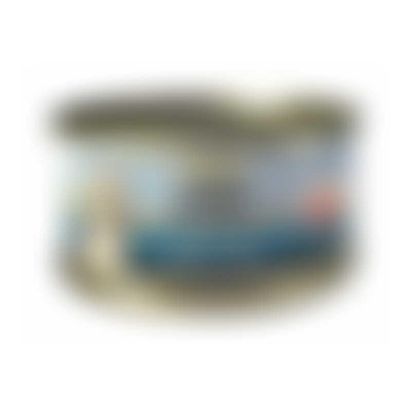 Canidae Feline PURE Tuna & Shredded Chicken in Gravy-  70g