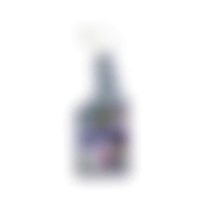 Urine Off Cat & Kitten Stain & Odor Sprayer-  16oz / 500ml