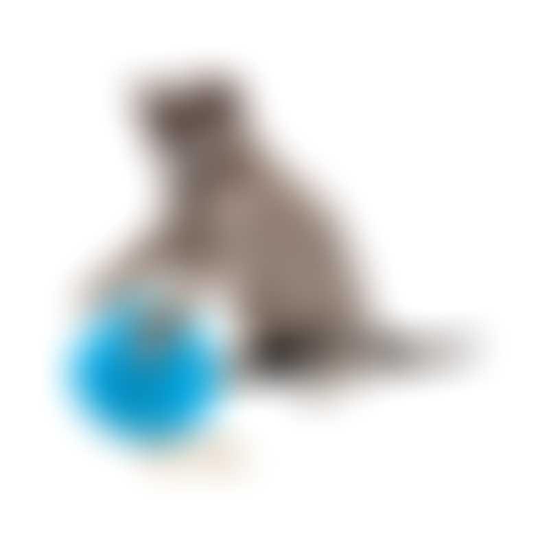 PetSafe Fishbowl Cat Feeder Toy