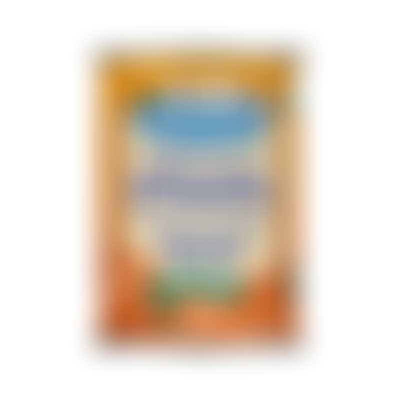 Nummy Tum-Tum 100% Pure Organic Pumpkin-  15oz