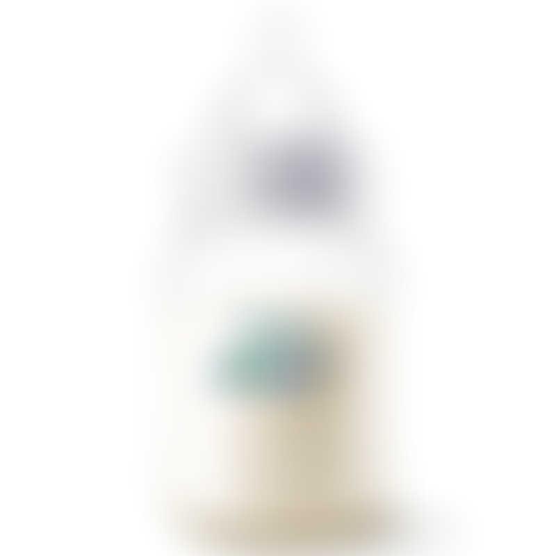 Philips Avent Anti-Colic PP Bottle 260ml