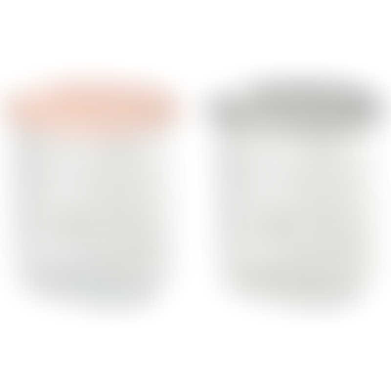 Beaba Set of 2 Maxi Portion Conservation Jar 240ml - Nude / Light Grey