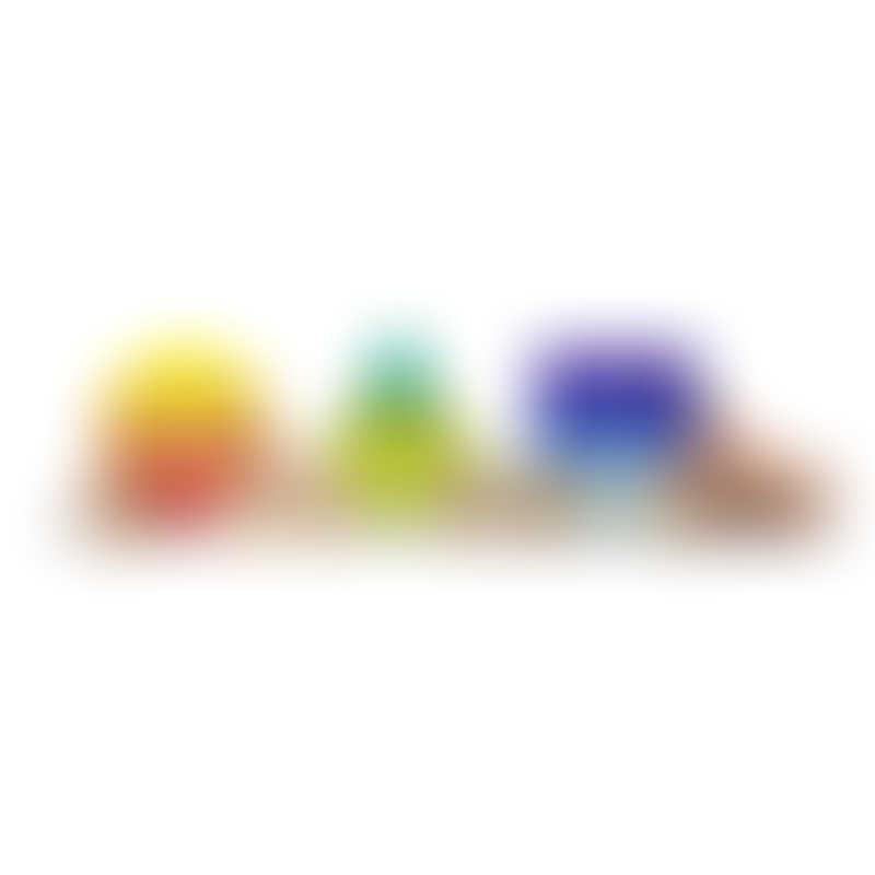 Tegu Shape Train - Rainbow