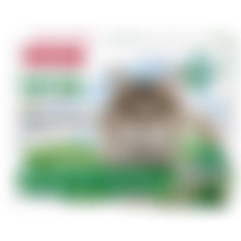 Beaphar VETOpure Bio Spot On Cat - 3 Vials / 1ml