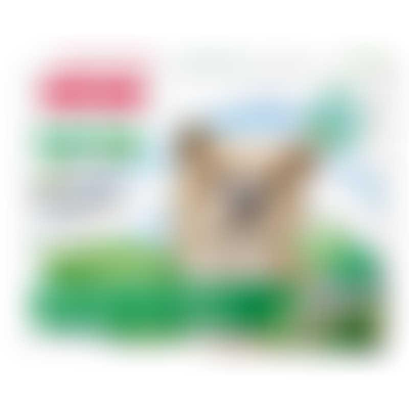 Beaphar VETOpure Bio Spot On for Small Dogs <15kg - 3 Vials / 1ml