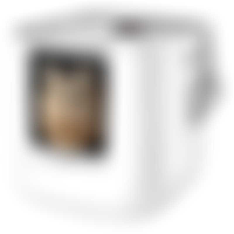 Modkat XL Litter Box - White