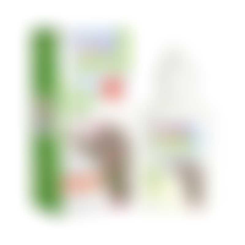 Xlear Kids Nasal Spray with Xylitol 22ml