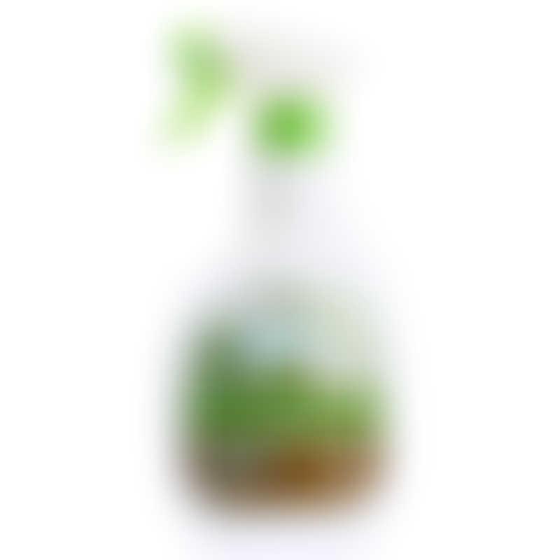 BacOff Multi Purpose Cleaner 500ml